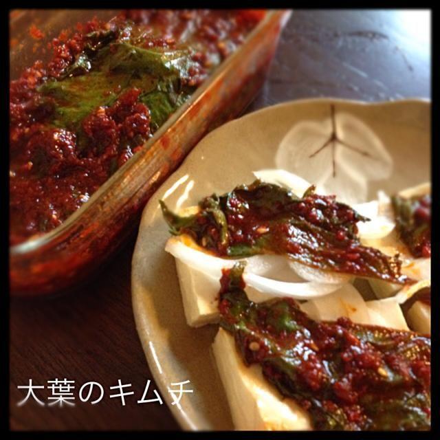 かっかっ辛い〜 けど美味い〜 韓国産唐辛子いっぱい袋に入ってるからレシピの倍量入れちゃった。なんか汁気が少ないのはそのせい? 島豆腐に新玉ねぎとこれのっけたよ - 252件のもぐもぐ - ちびめがさんの料理 上海在住の中国人に習った大葉のキムチ by ririkahime