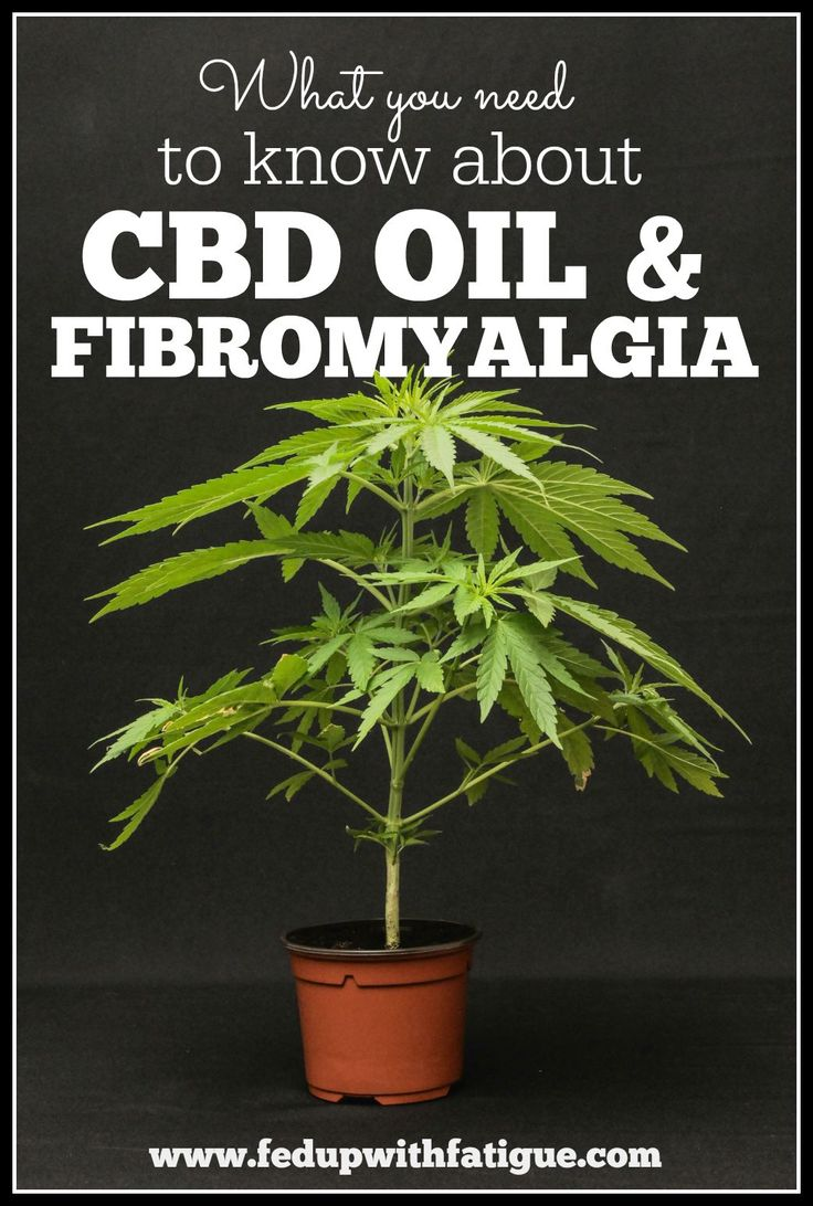 What you need to know about CBD oil and fibromyalgia. Is it legal? Find out here. http://fedupwithfatigue.com/?p=628