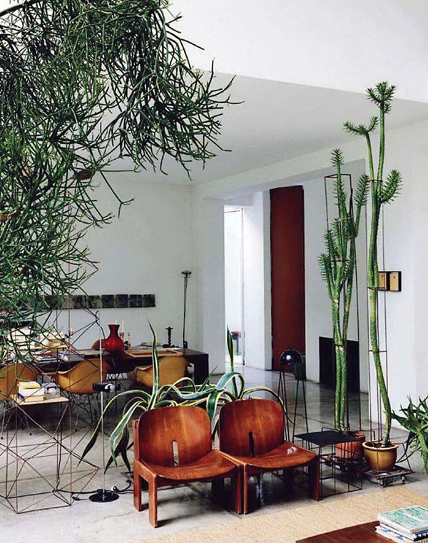 Plant filled apartment! Great Style.