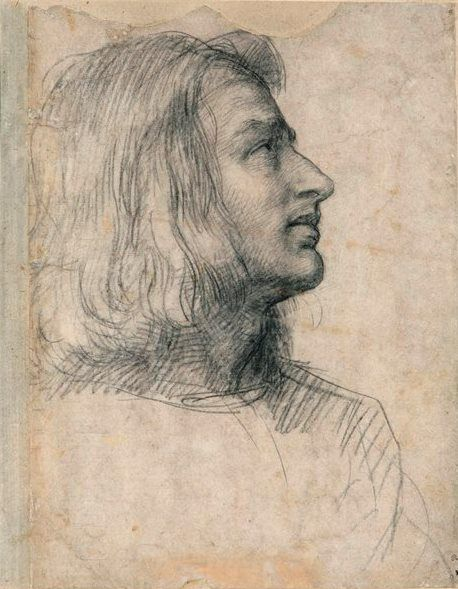 Head of a Young Man, Looking Up to the Right, by Andrea del Sarto, 1512, black chalk, 12 3/8 x 9 5/8. Fondation Custodia, Collection Frits Lugt, Paris.