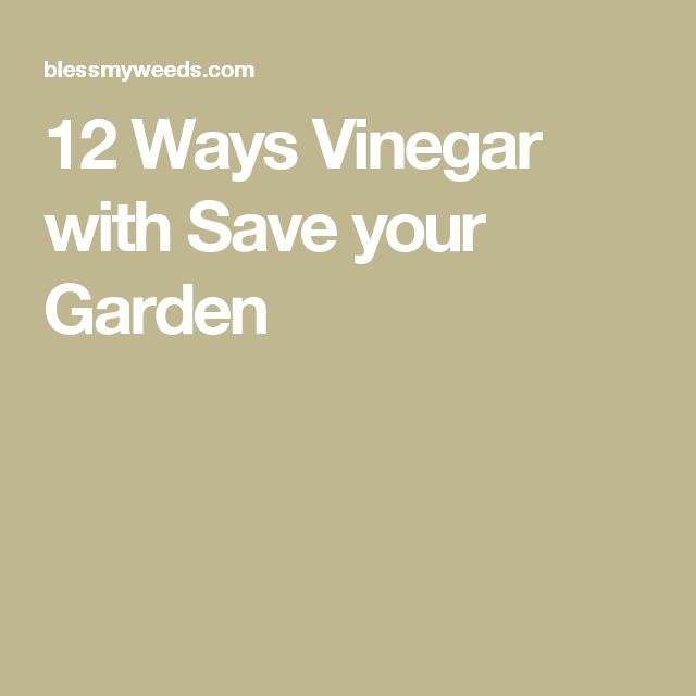 12 Ways Vinegar with Save your Garden