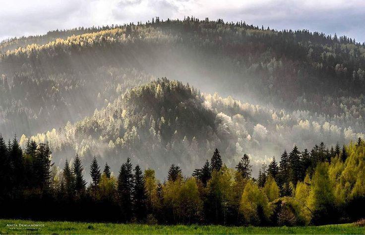 """Polubienia: 484, komentarze: 4 – Tomek Szklarski (@ciekawe.miejsca) na Instagramie: """"Beskidy by @banita_travel Dla odmiany Moraw i Toskanii polskie góry, a konkretnie Beskid Żywiecki,…"""""""