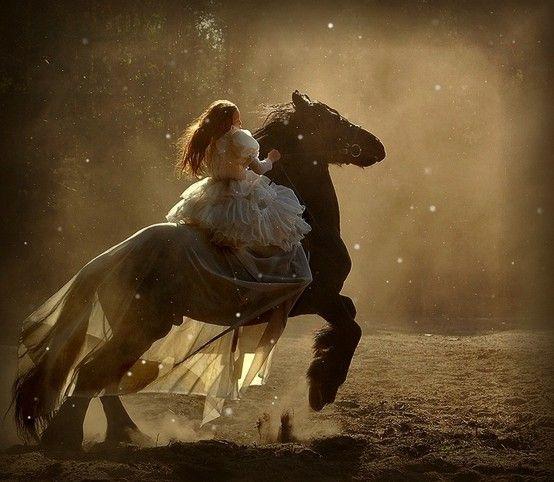 run freeCat, Magic, Dreams, Horses, Fantasy Photography, Beautiful, Display, Princesses, Fairies Tales