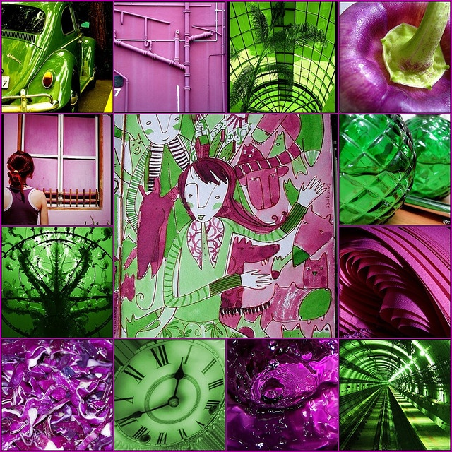 green purple 129 best purple and green very pretty images on pinterest