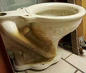 This antique Victorian toilet bowl was made by a company called Ronalds & Johnson of Brooklyn, NY - See more at: http://myauctionfinds.com/2011/11/18/a-fancy-antique-toilet-bowl/#sthash.r8Mtdj7j.dpuf
