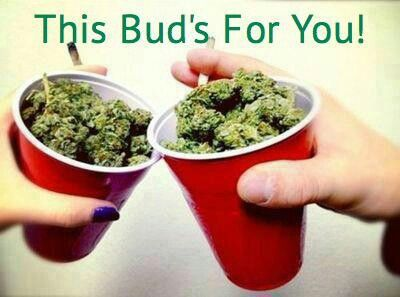 This buds for you!