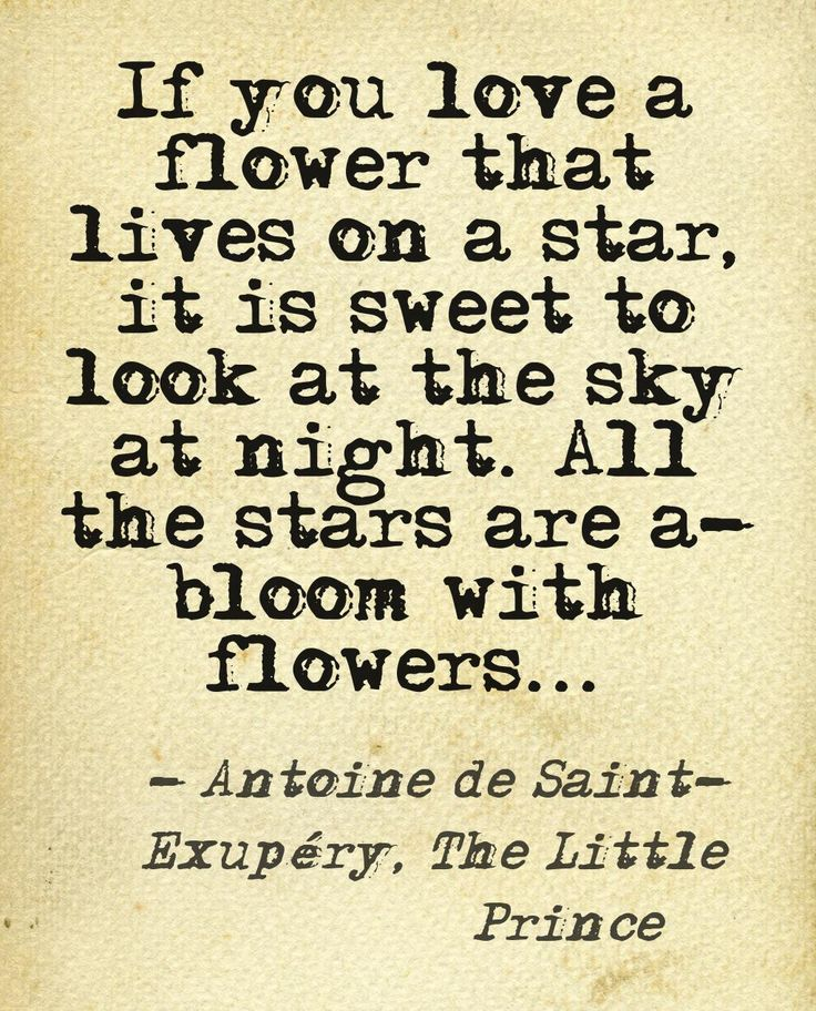 Antoine de Saint-Exupéry, The Little Prince