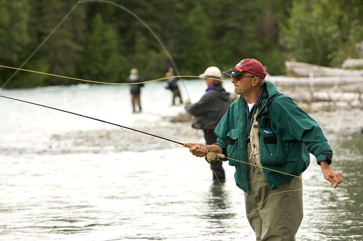 How to Bring Home Fish Caught Out ofState? http://californiaoutdoorsqas.com/2017/07/20/how-to-bring-home-fish-caught-out-of-state/pic.twitter.com/XlZBvTpghe