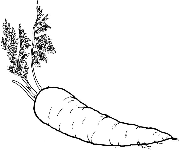 Healthy Food Coloring Pages food of carrot vegetable