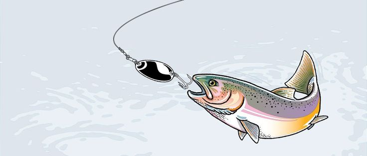 25 best ideas about homemade fishing lures on pinterest for Funny fishing lures