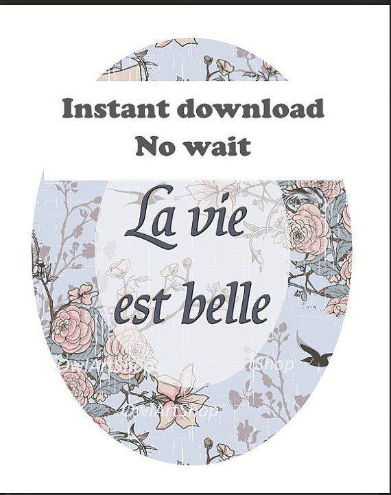 Francese citazione ispiratrice la vita è bella 'la vie
