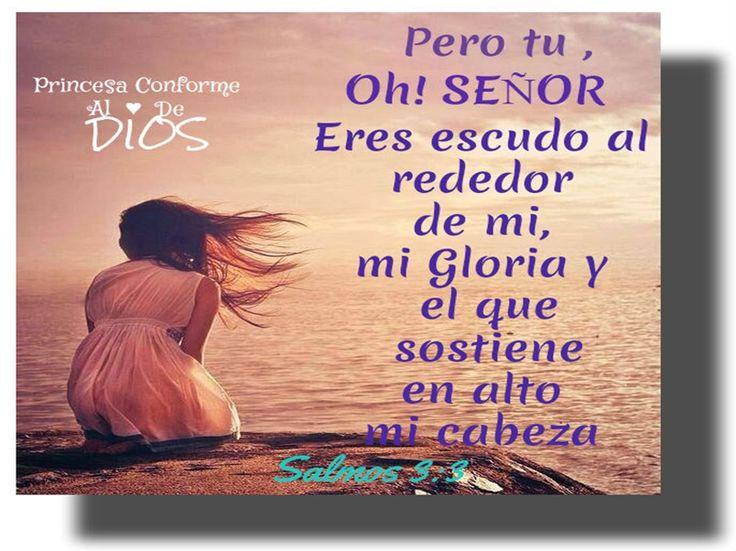 Dios es tu escudo https://www.facebook.com/PrincesaConformeAlCorazonDeDios
