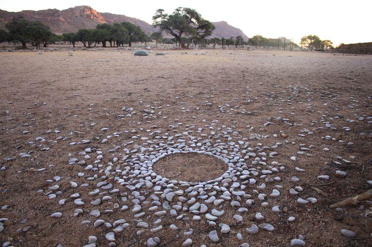 Arranging Kameeldoring seeds to form a circle. Namtib. Namibia