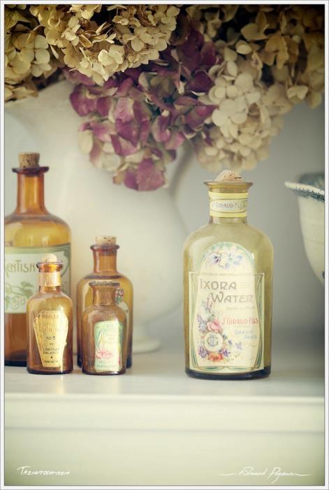 vintage bottles: Antiques Bottle, Medicine Bottle, Vintage Labels, Vintage Bottle, Hydrangeas Flowers, Beautiful Glasses, Flowers Vintage, Vintage Antique, Glasses Bottle