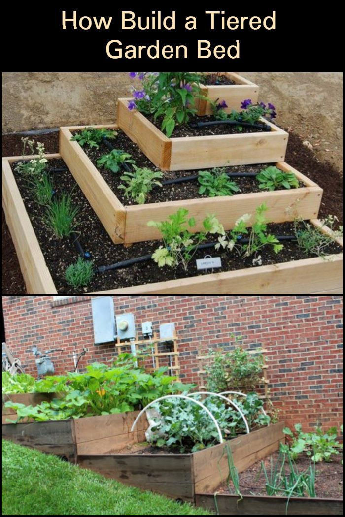 This Tiered Garden Bed Is A Great Solution For You Raised Vegetable Garden Designs Veggie Garden Design Diy Raised Garden