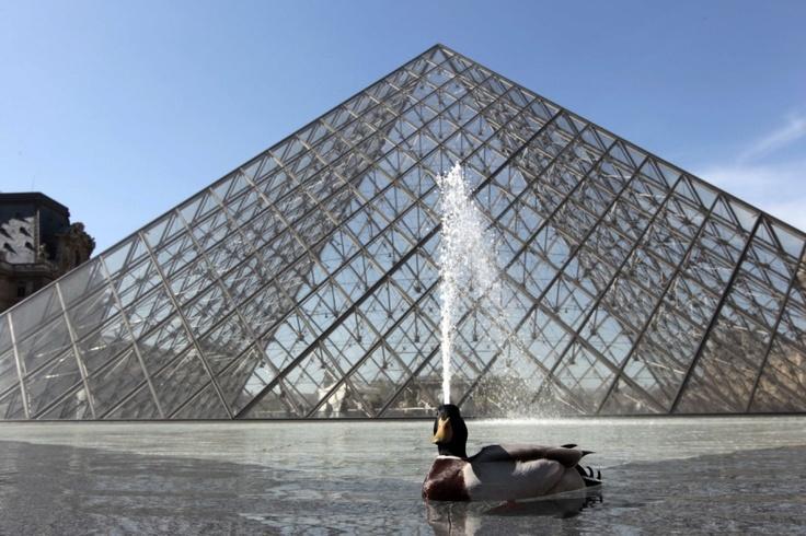 Im Brunnen vor der Glaspyramide des Pariser Louvre genießt eine Ente den warmen Frühling.