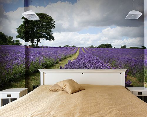 fotobehang slaapkamer natuur. Supergaaf!