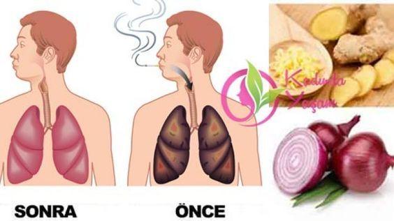 Sigara dumanından ciğerleri temizleme kürü