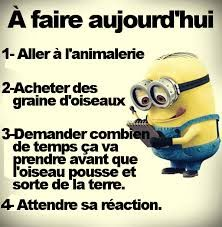 citations minions - Recherche Google