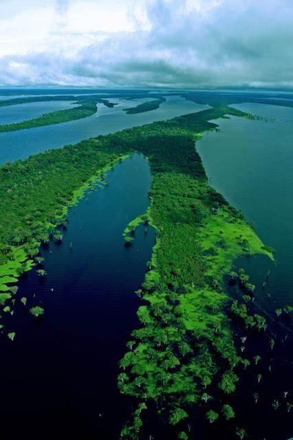 The Manaus Amazon River, Brazil