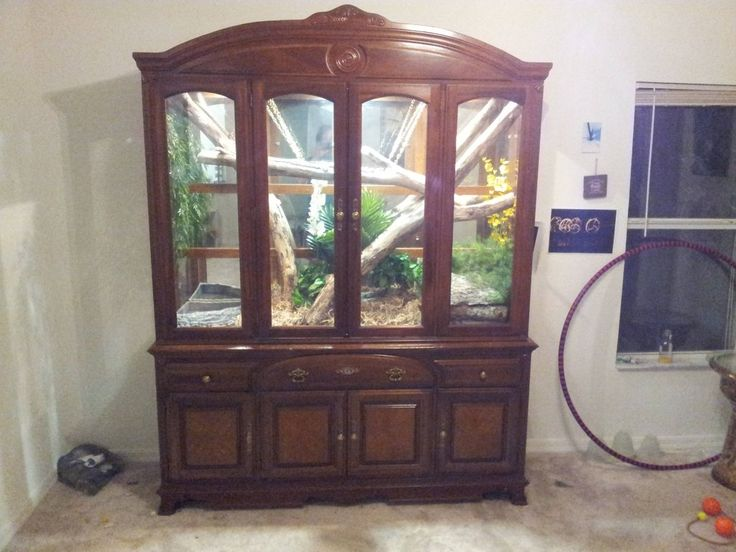 Furniture vivarium. I would love to do this for my dragons if I can find a way to deal with humidity!