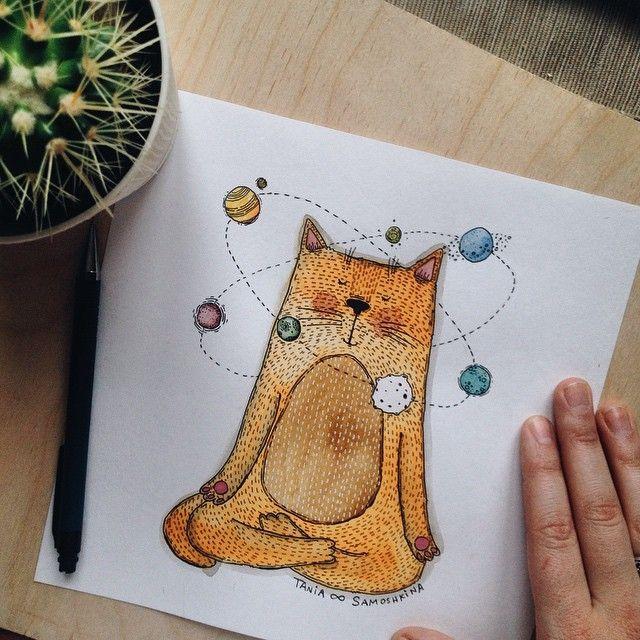 Медитирующий кот