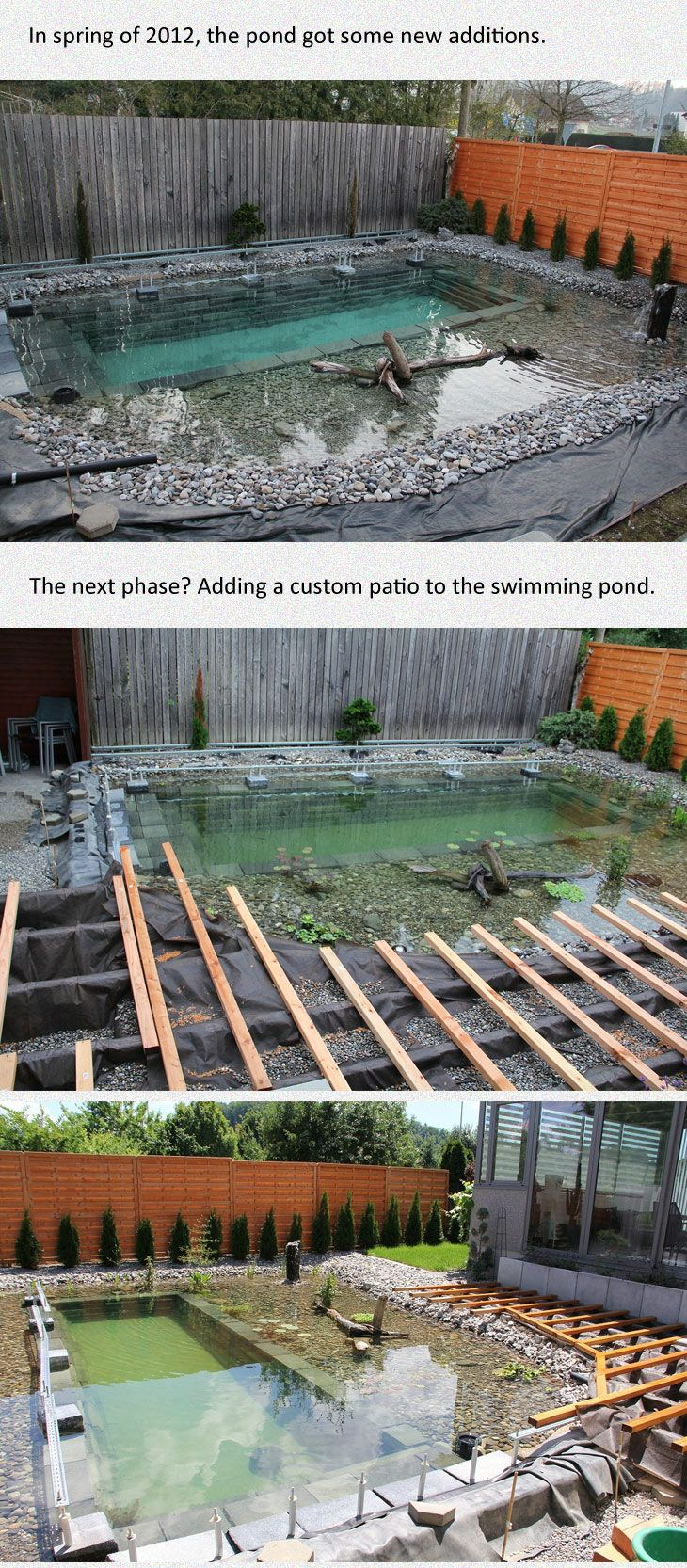 Backyard pond-style pool and deck, shown in stages