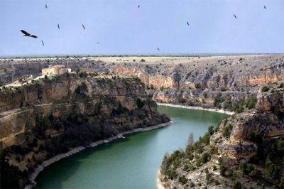 La colonia de buitres leonados del segoviano Parque Natural 'Hoces del Río Duratón' alcanza las 729 parejas http://www.revcyl.com/web/index.php/medio-ambiente/item/9954-la-colonia-de-b