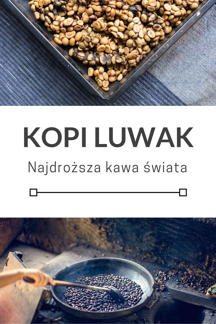 Kopi Luwak - warto kosztem zwierząt?