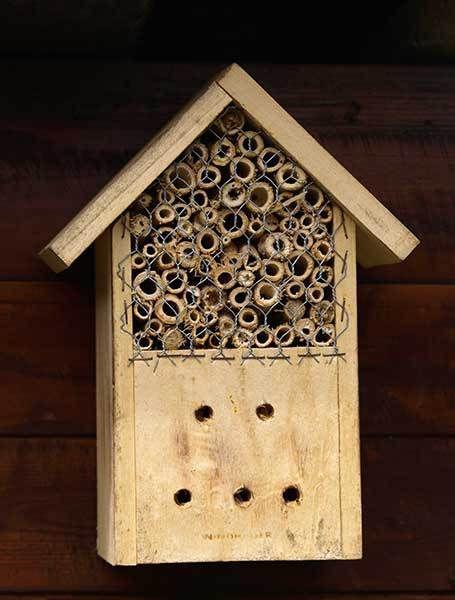 17 meilleures id es propos de selber bauen insektenhotel. Black Bedroom Furniture Sets. Home Design Ideas