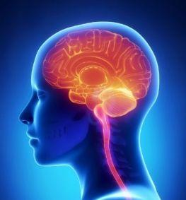 Γιατί είναι μύθος ότι χρησιμοποιούμε μόνο το 10% του εγκεφάλου μας   psychologynow.gr