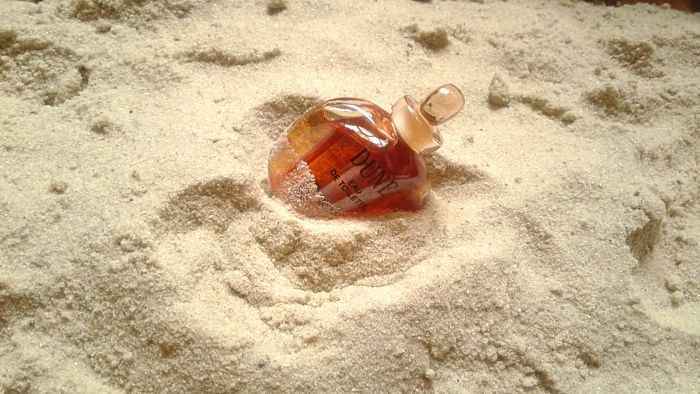 конкурсне фото № 42  Земля Christian Dior Dune
