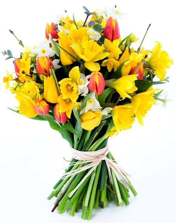 Lush Lemon - Seasonal British Flowers Bouquet (http://www.bynature.co.uk/lush-lemon-seasonal-british-flowers-bouquet/)