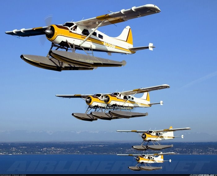 Wow..... CoolFly High, Canadian Fly, Fly Boats