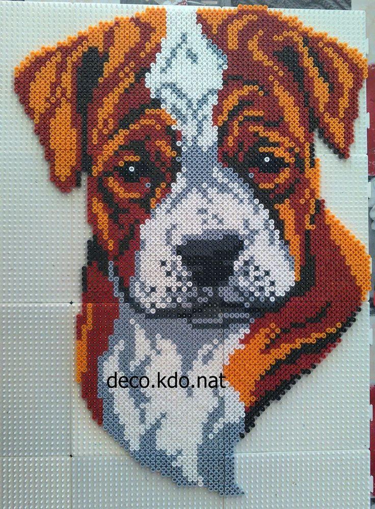 Boxer dog hama beads by Deco.Kdo.Nat