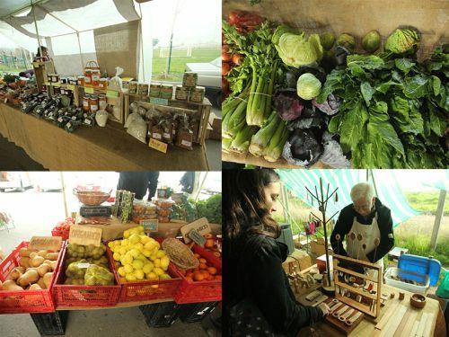 20 razones por las que amo la Ecoferia de LaReina #eco #organico #labettyrizzo #Santiago