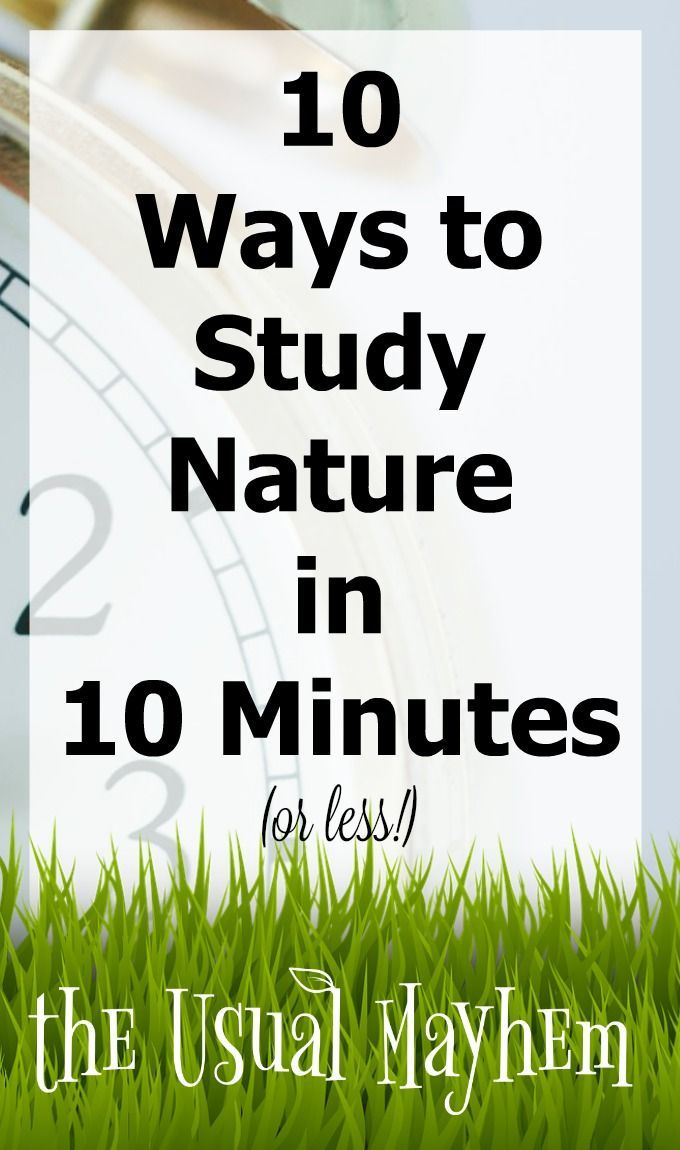 If you get overwhelmed thinking about it, or are wondering how to do nature study, here are 10 ways to study nature in 10 minutes you'll love! #ihsnet #nature #winter