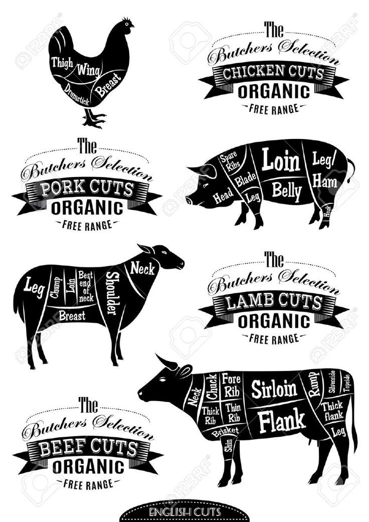 barbecue pig butchers chart stock image image 25147161
