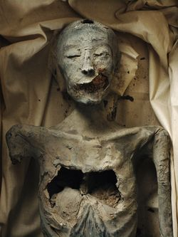 "The remains of Tutankamun's Parents, Akhenaten and the mummy only identified as ""The Younger Lady"", and his grandparents, Queen Tiye and Amenhotep III.    It was recently proved this ""Younger Lady"" mummy is in fact Tutankamun's mother, and a full sister to Akhenaten. Thus King Tut only had one set of grandparents."