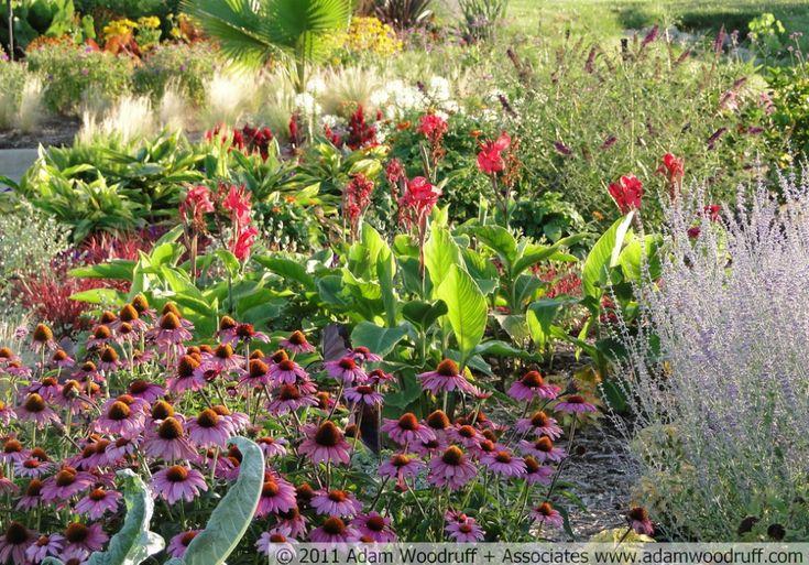 Pin On Mediterranean Garden
