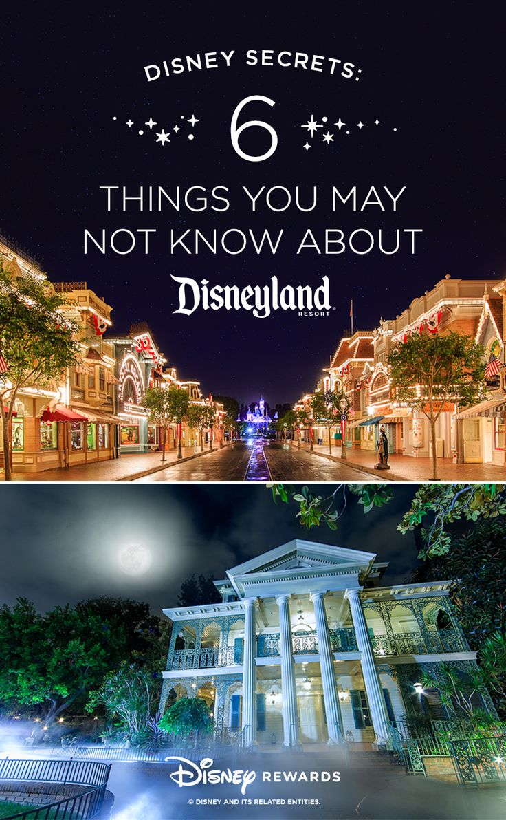 From the Petrified Tree to a 300-person choir, discover six unexpected facts about the Happiest Place on Earth that even ultimate Disney fans may not know!