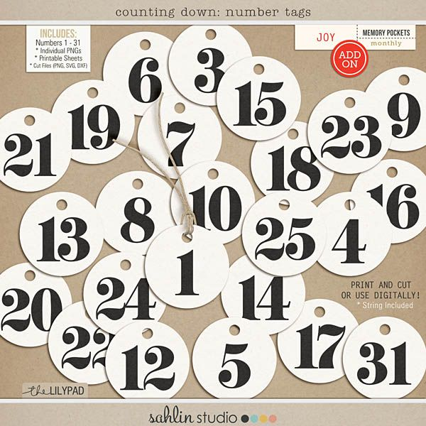 Counting Down: Number Tags by Sahlin Studio