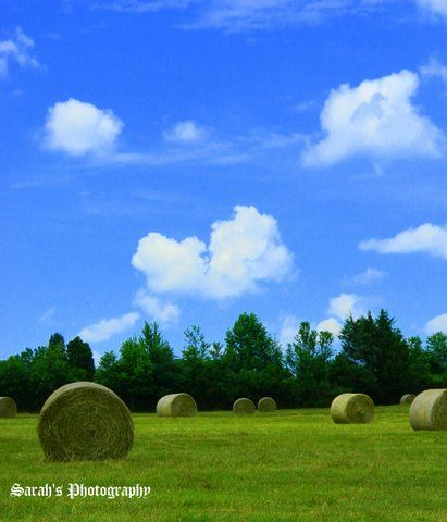 From New Hope Baptist Church's lawn I presume.  In Gastonia North Carolina
