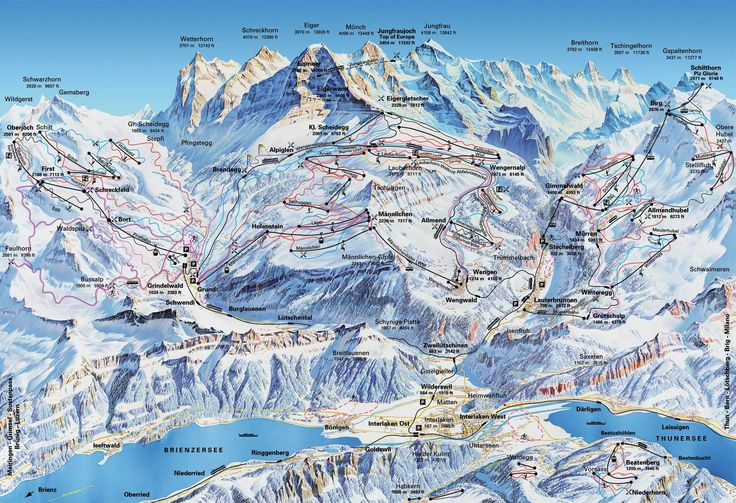 jungfrau-trail-map.jpg