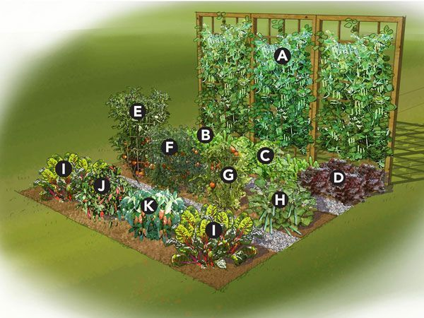 Summer Vegetable Garden Plan - a good idea for small gardens