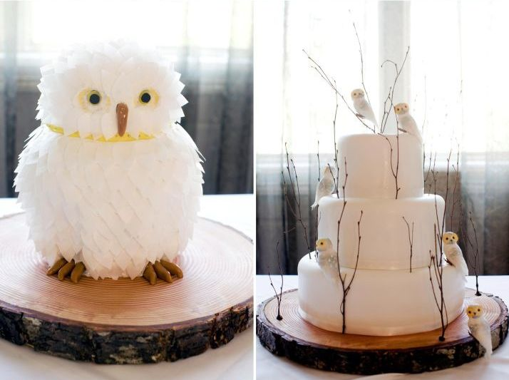 I like the owl cake on the left... he's cute... the other one is kind of simple...if it had a little more colors, maybe a few different styles of owls and something else it'd look a little better, but deff the one on the left is fab!