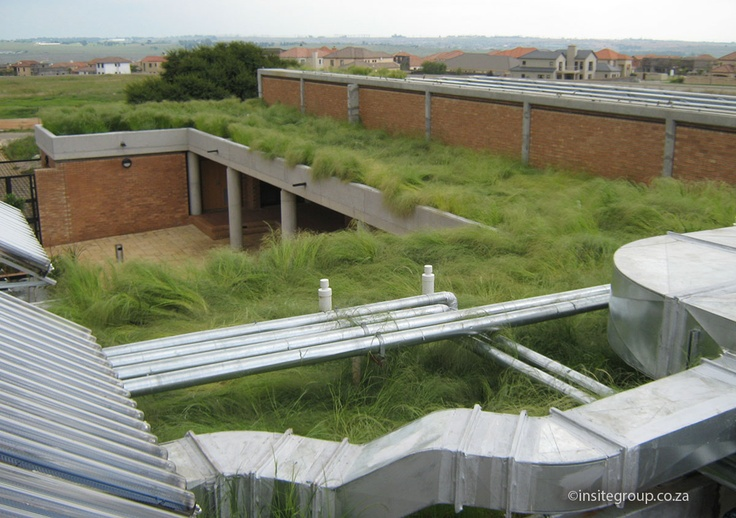 Green roof by Insite. http://insitegroup.co.za/