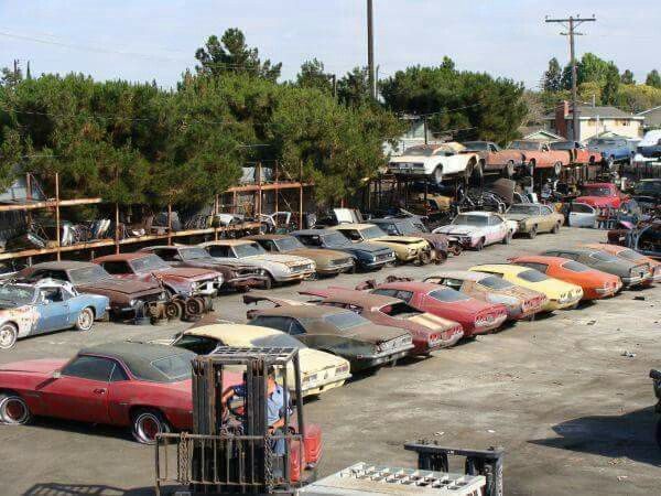 1000 Images About Muscle Car Barn Finds On Pinterest