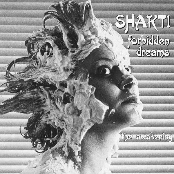 Shakti Forbidden Dreams The Awakening Vinyl Pussycat Records Electronica Music Shakti Goth Dancing