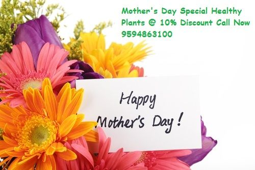 Shop for fresh & beautiful Mother's day plants @ http://bit.ly/1mHxuRV